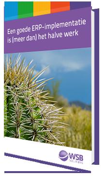 E-book Een goede ERP-implementatie is meer dan het halve werk