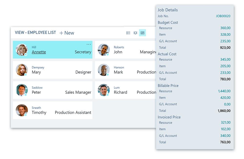 Microsoft Dynamics 365 Business Central - Projecten